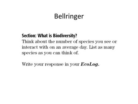 Bellringer. A World Rich in Biodiversity Biodiversity, short for biological diversity, is the variety of organisms in a given area, the genetic variation.