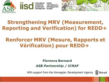 Strengthening MRV (Measurement, Reporting and Verification) for REDD+ Renforcer MRV (Mesure, Rapports et Vérification) pour REDD+ With support from the.