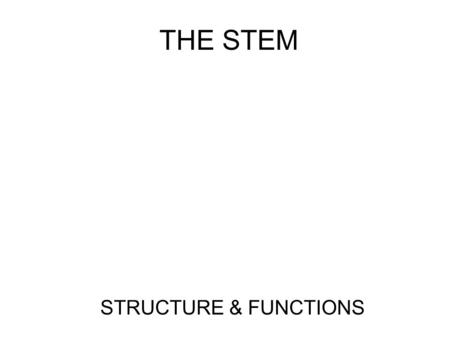 THE STEM STRUCTURE & FUNCTIONS. General Terminology Annual – a plant that completes its life cycle (seed, flower, fruit and seed) in one growing season.