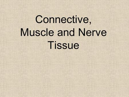Connective, Muscle and Nerve Tissue. Connective Tissues 2 Parts: 1. Cells (living) 2. Matrix (nonliving substance released by cells) A. Ground Substance.