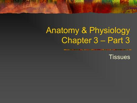 Anatomy & Physiology Chapter 3 – Part 3 Tissues Body Tissues Tissues Groups of cells with similar structure and function 4 primary types: Epithelium.