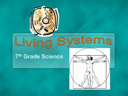 7 th Grade Science. Living Systems Every living thing has parts that work together.Every living thing has parts that work together. From cells to organs,