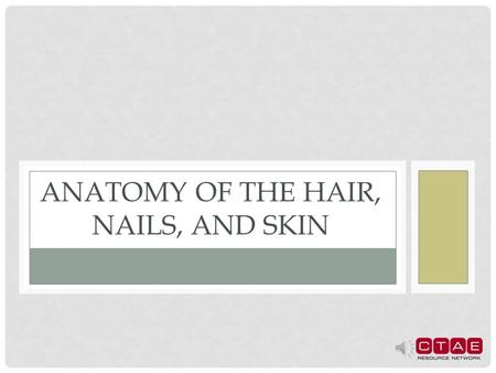 Anatomy of the Hair, Nails, and Skin