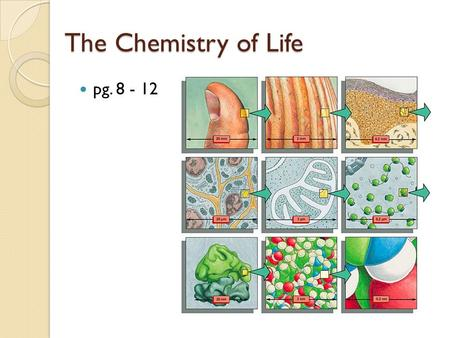 The Chemistry of Life pg. 8 - 12. Why is the study of cells so important? Effects of medicine Diverse Careers Benefits of Foods Ethical testing Improved.