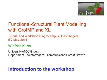 Functional-Structural Plant Modelling with GroIMP and XL
