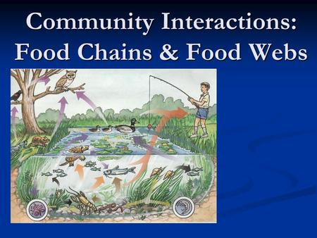 Community Interactions: Food Chains & Food Webs. Review-What is Ecology? Ecology Ecology The study of interactions of organisms and the physical environment.