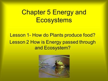 Chapter 5 Energy and Ecosystems Lesson 1- How do Plants produce food? Lesson 2 How is Energy passed through and Ecosystem?