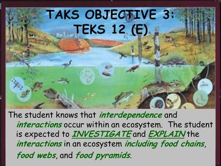 TAKS OBJECTIVE 3: TEKS 12 (E) The student knows that interdependence and interactions occur within an ecosystem. The student is expected to INVESTIGATE.
