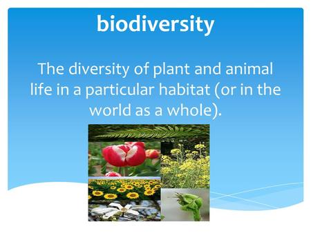 Biodiversity The diversity of plant and animal life in a particular habitat (or in the world as a whole).