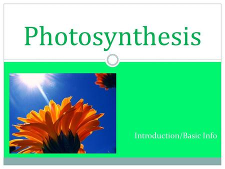Introduction/Basic Info Photosynthesis. Essential for all life on earth Autotrophs Consumers Photosynthesis Glucose (only an example) Respiration CO 2.