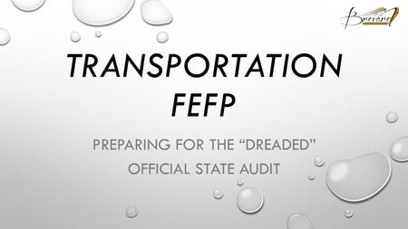 "TRANSPORTATION FEFP PREPARING FOR THE ""DREADED"" OFFICIAL STATE AUDIT."
