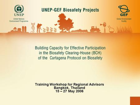 Training Workshop for Regional Advisors Bangkok, Thailand 15 – 27 May 2006.