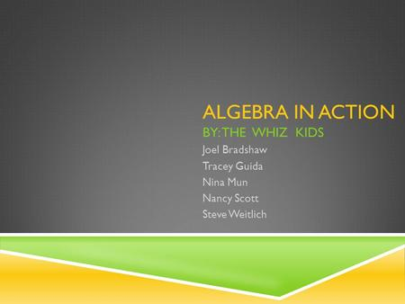 ALGEBRA IN ACTION BY: THE WHIZ KIDS Joel Bradshaw Tracey Guida Nina Mun Nancy Scott Steve Weitlich.