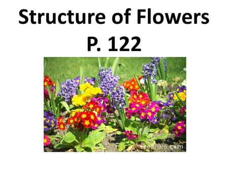 Structure of Flowers P. 122.