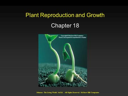 Johnson - The Living World: 3rd Ed. - All Rights Reserved - McGraw Hill Companies Plant Reproduction and Growth Chapter 18 Copyright © McGraw-Hill Companies.