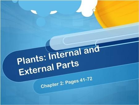 Plants: Internal and External Parts Chapter 2: Pages 41-72.