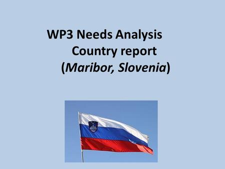 WP3 Needs Analysis Country report (Maribor, Slovenia)