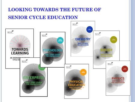 LOOKING TOWARDS THE FUTURE OF SENIOR CYCLE EDUCATION.