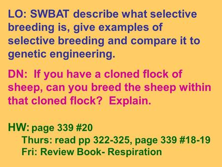 LO: SWBAT describe what selective breeding is, give examples of selective breeding and compare it to genetic engineering. DN: If you have a cloned flock.
