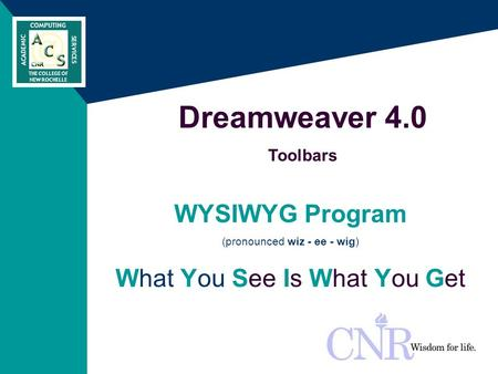 WYSIWYG Program (pronounced wiz - ee - wig) What You See Is What You Get Dreamweaver 4.0 Toolbars.