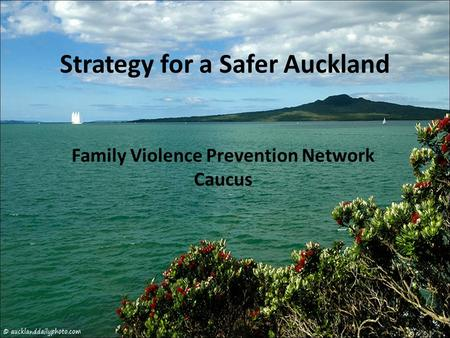 Strategy for a Safer Auckland Family Violence Prevention Network Caucus.