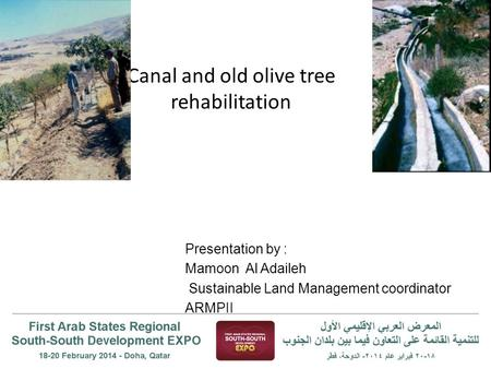 Canal and old olive tree rehabilitation Presentation by : Mamoon Al Adaileh Sustainable Land Management coordinator ARMPII.