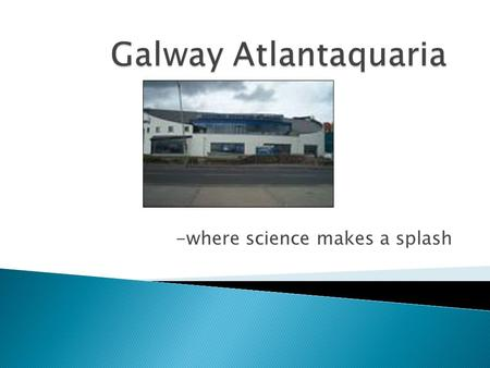 -where science makes a splash.  The Atlantaquaria is located in Salthill looking out onto Galway Bay.  The river that flows through Galway is called.