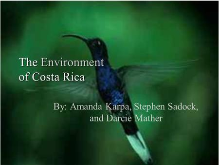 The Environment of Costa Rica By: Amanda Karpa, Stephen Sadock, and Darcie Mather.