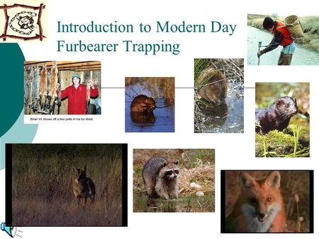 Introduction to Modern Day Furbearer Trapping. What Furbearer Trapping is All About: Conservation and Management  Trapping is Ecologically Sound  Trapping.