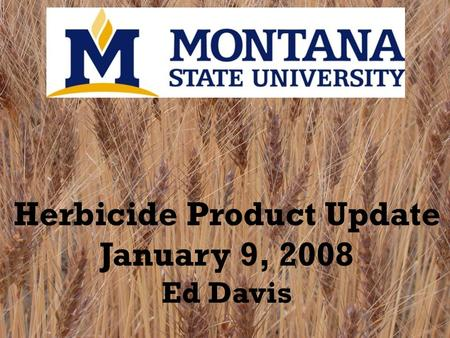 Herbicide Product Update January 9, 2008 Ed Davis.