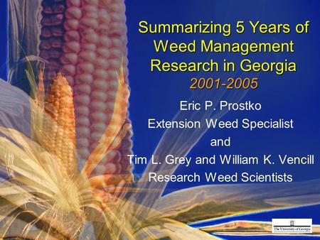 Summarizing 5 Years of Weed Management Research in Georgia 2001-2005 Eric P. Prostko Extension Weed Specialist and Tim L. Grey and William K. Vencill Research.