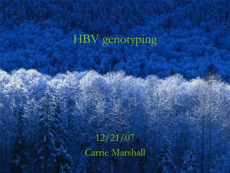 HBV genotyping 12/21/07 Carrie Marshall. Received a send-out request for HBV genotyping on a 52y man.