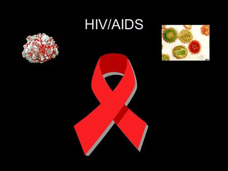 HIV/AIDS. Transmission categories of adults and adolescents with HIV/AIDS diagnosed during 2004.