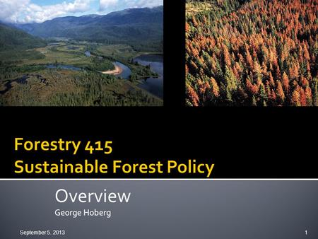Overview George Hoberg September 5. 2013 1.  Foundations  Domain, concepts  Categories of forest policy  Analytical framework  Policy cycle  Course.
