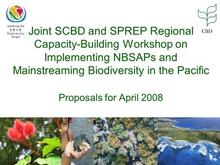 Joint SCBD and SPREP Regional Capacity-Building Workshop on Implementing NBSAPs and Mainstreaming Biodiversity in the Pacific Proposals for April 2008.