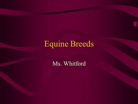 Equine Breeds Ms. Whitford. Light Horses At least 14.2 hands tall at the withers 900 - 1400 pounds Most common type of horse in the United States.