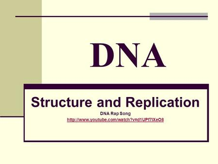 Structure and Replication