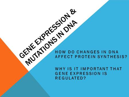 GENE EXPRESSION & MUTATIONS IN DNA