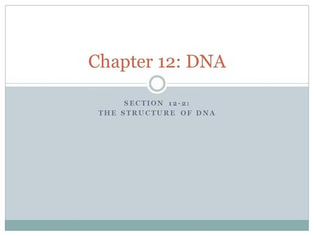 Section 12-2: The structure of DNA