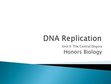 Unit 9: The Central Dogma Honors Biology.  The process of DNA replication is fundamentally similar for prokaryotes and eukaryotes.  DNA replication.