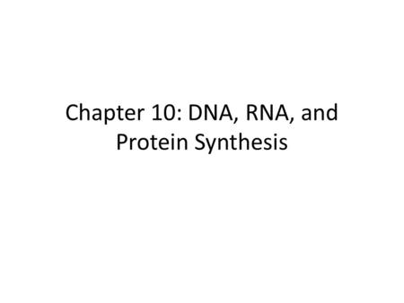 Chapter 10: DNA, RNA, and Protein Synthesis