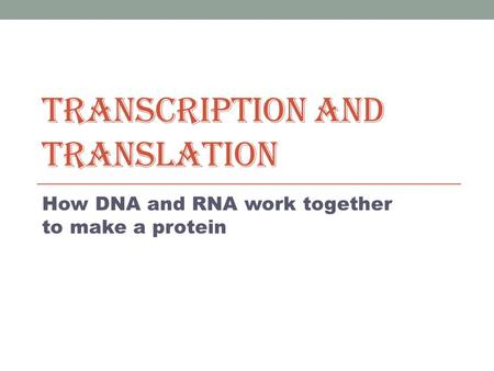 TRANSCRIPTION AND TRANSLATION How DNA and RNA work together to make a protein.
