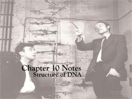 Chapter 10 Notes Structure of DNA. DNA is Made up repeating units of nucleotides Three parts of a Nucleotide are: 1. Deoxyribose sugar 2. Phosphate group.
