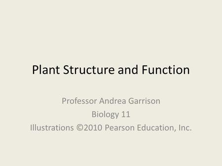 Plant Structure and Function Professor Andrea Garrison Biology 11 Illustrations ©2010 Pearson Education, Inc.