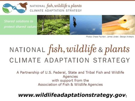 A Partnership of U.S. Federal, State and Tribal Fish and Wildlife Agencies with support from the Association of Fish & Wildlife Agencies Shared solutions.