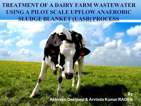 TREATMENT OF A DAIRY FARM WASTEWATER USING A PILOT SCALE UPFLOW ANAEROBIC SLUDGE BLANKET (UASB) PROCESS By Ashveen Deerpaul & Arvinda Kumar RAGEN.