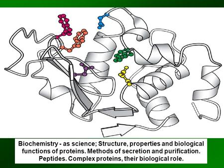Biochemistry - as science; Structure, properties and biological functions of proteins. Methods of secretion and purification. Peptides. Complex proteins,
