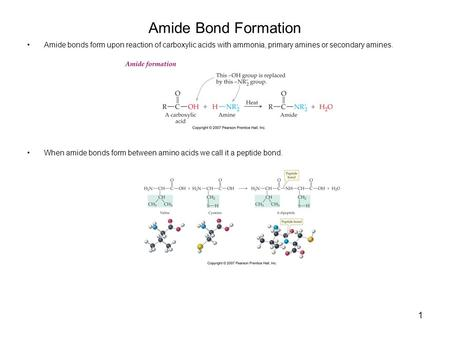 1 Amide Bond Formation Amide bonds form upon reaction of carboxylic acids with ammonia, primary amines or secondary amines. When amide bonds form between.