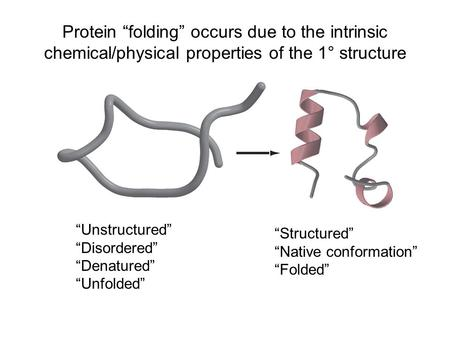 "Protein ""folding"" occurs due to the intrinsic chemical/physical properties of the 1° structure ""Unstructured"" ""Disordered"" ""Denatured"" ""Unfolded"" ""Structured"""