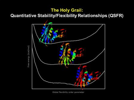 The Holy Grail: Quantitative Stability/Flexibility Relationships (QSFR)
